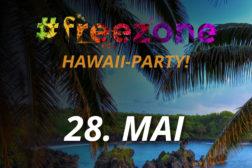 Hawaii-party